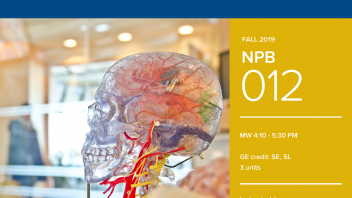 Fall 2019 UC Davis University Honors Program Course: NPB 12